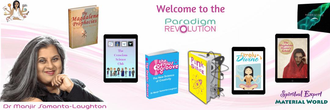 Paradigm Revolution Banner