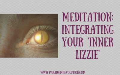 Meditation: Integrating your Inner Lizzie